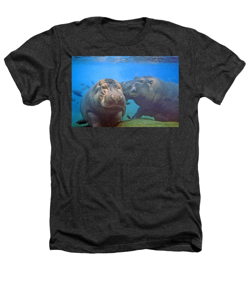 Animals Heathers T-Shirt featuring the photograph Hippos In Love by Steve Karol