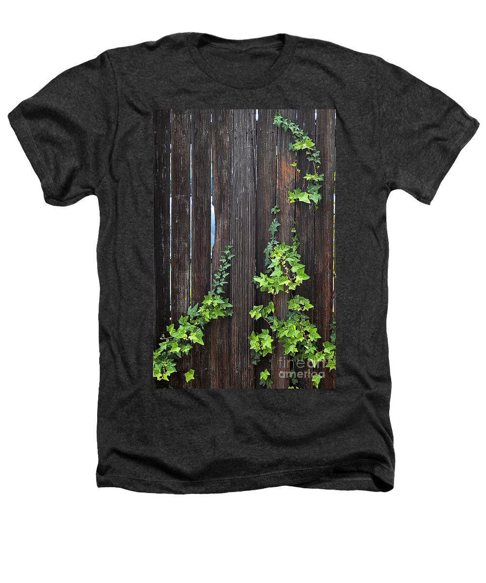 Clay Heathers T-Shirt featuring the photograph Ivy On Fence by Clayton Bruster