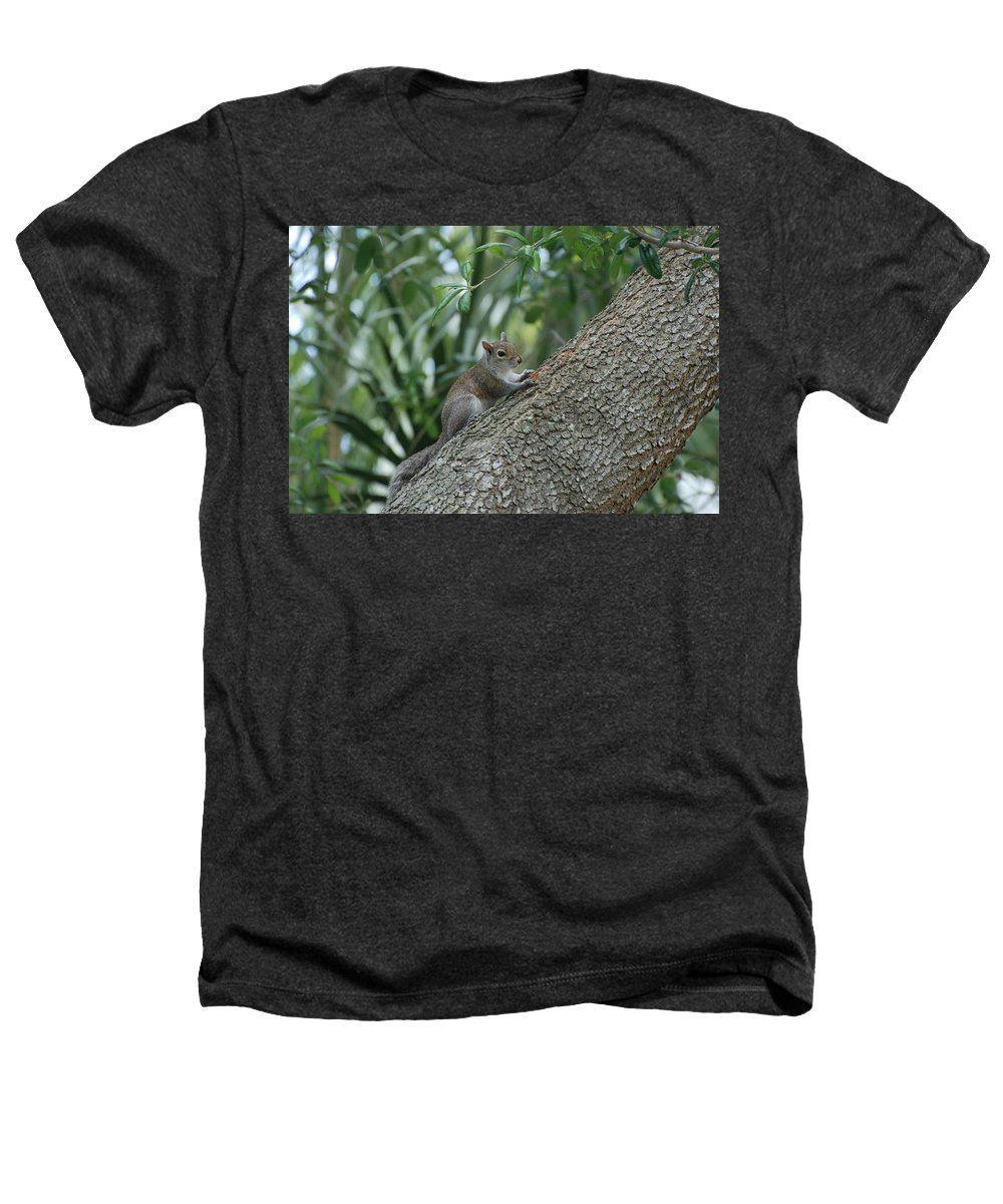 Squirrels Heathers T-Shirt featuring the photograph Just Chilling Out by Rob Hans
