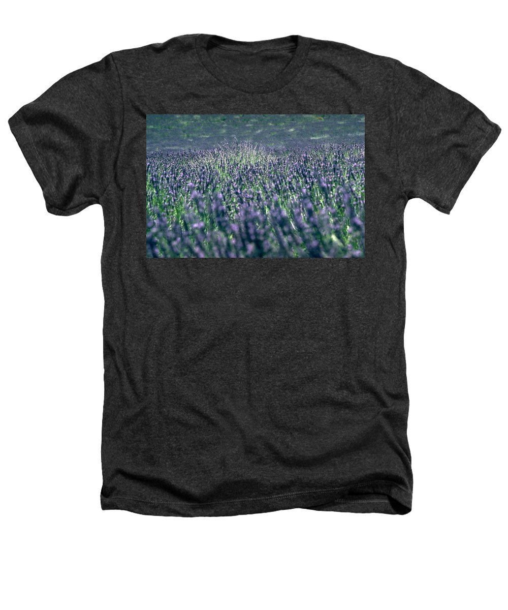 Lavender Heathers T-Shirt featuring the photograph Lavender by Flavia Westerwelle