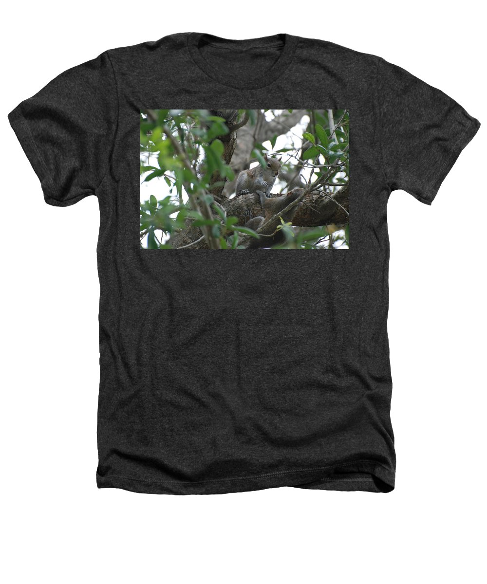 Squirrel Heathers T-Shirt featuring the photograph Lending A Helping Hand by Rob Hans