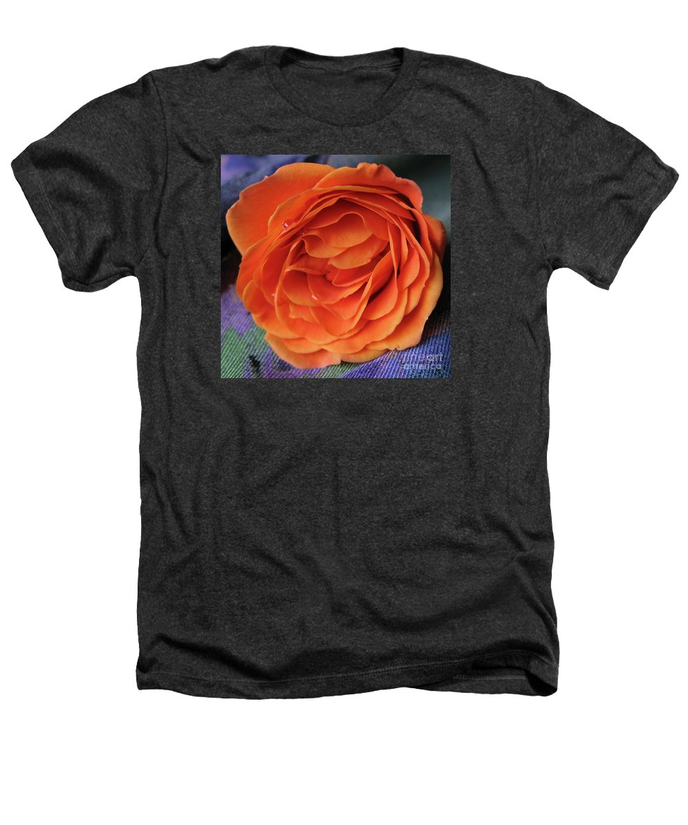 Rose Heathers T-Shirt featuring the photograph Really Orange Rose by Ann Horn