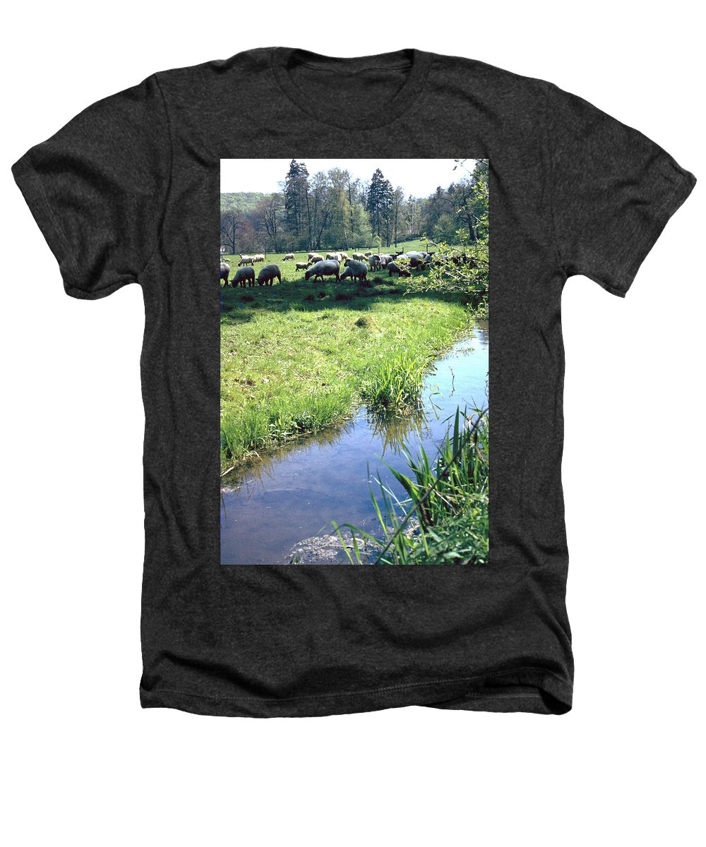 Sheep Heathers T-Shirt featuring the photograph Sheep by Flavia Westerwelle