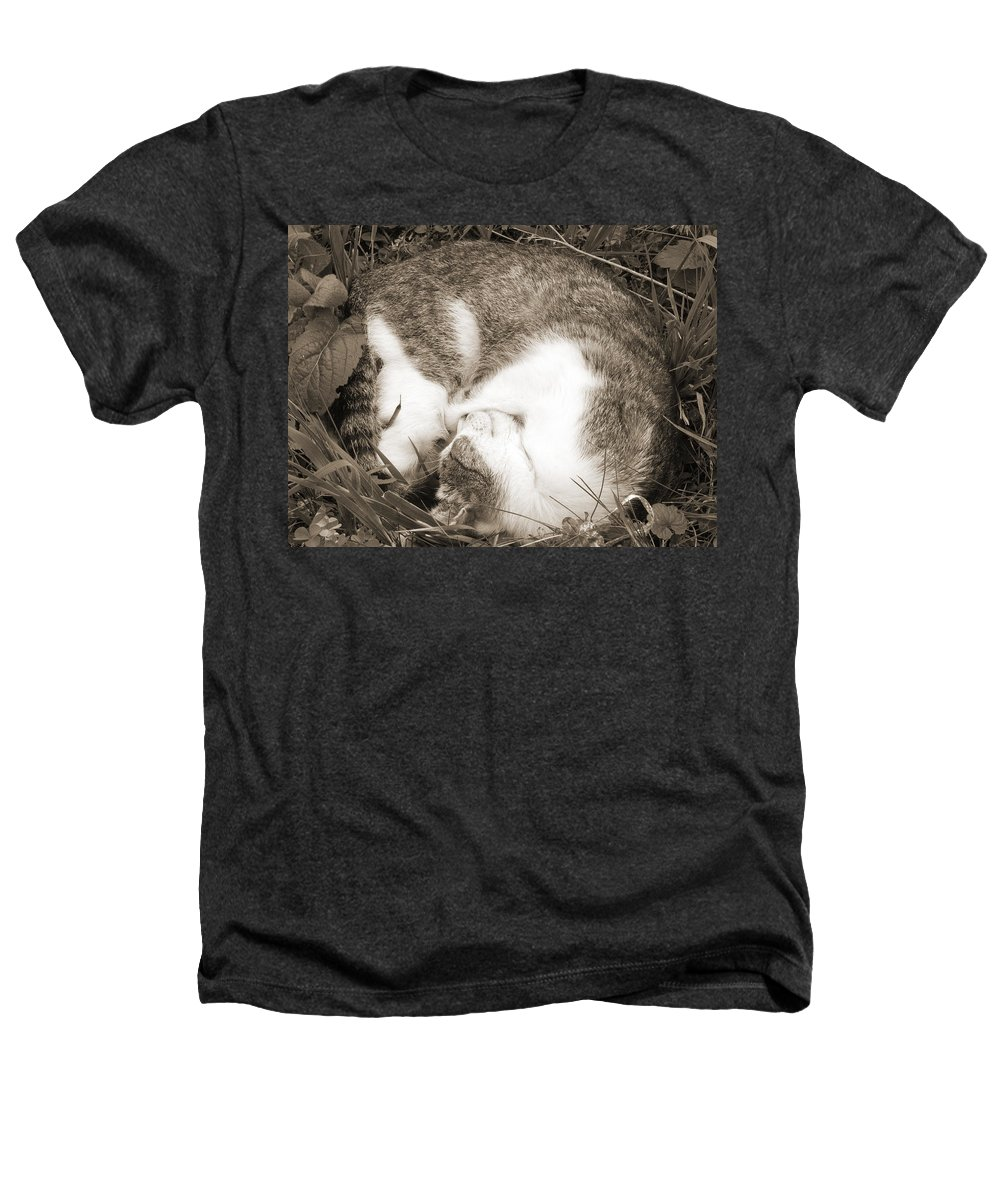 Pets Heathers T-Shirt featuring the photograph Sleeping by Daniel Csoka