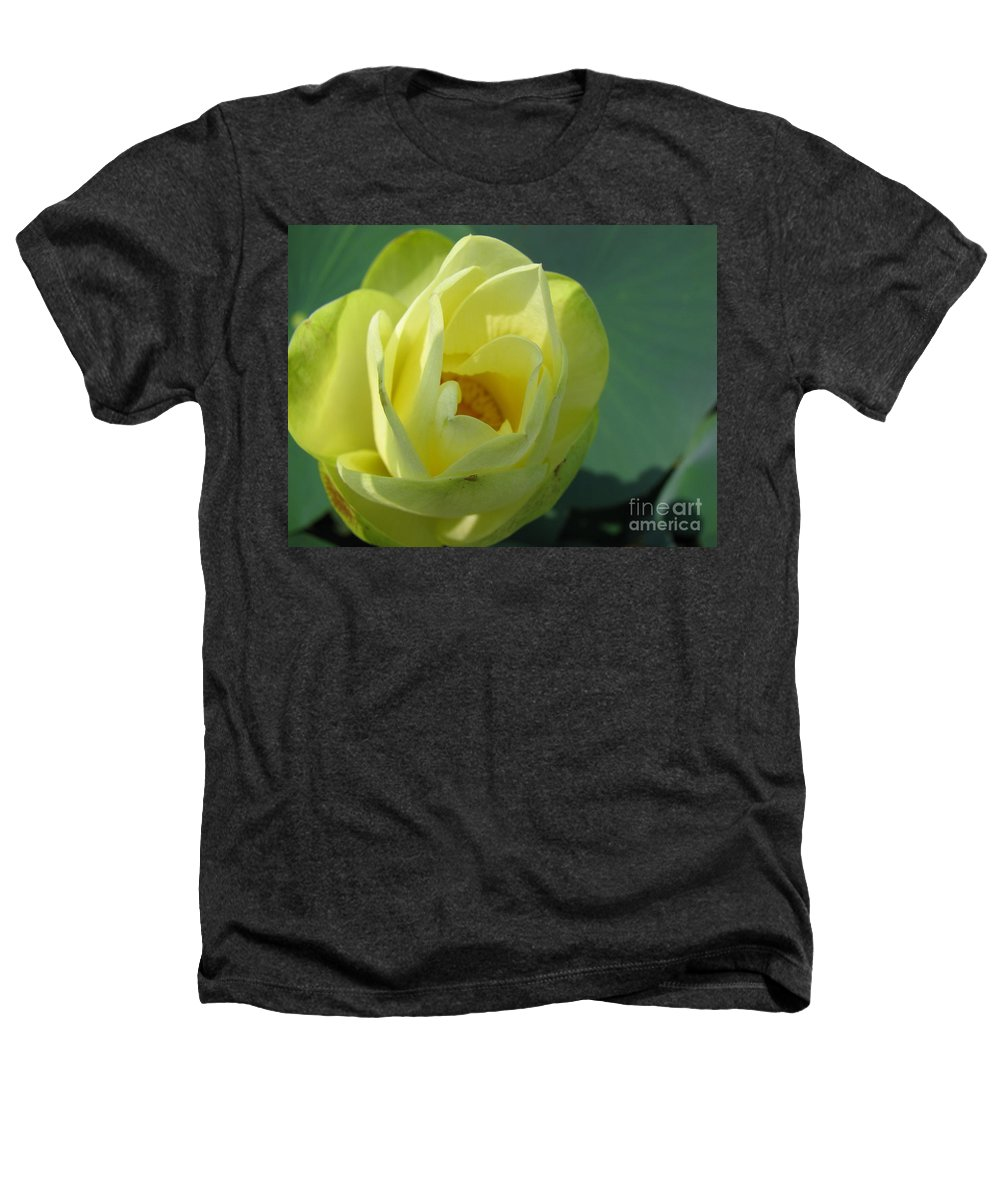 Lotus Heathers T-Shirt featuring the photograph Softly by Amanda Barcon