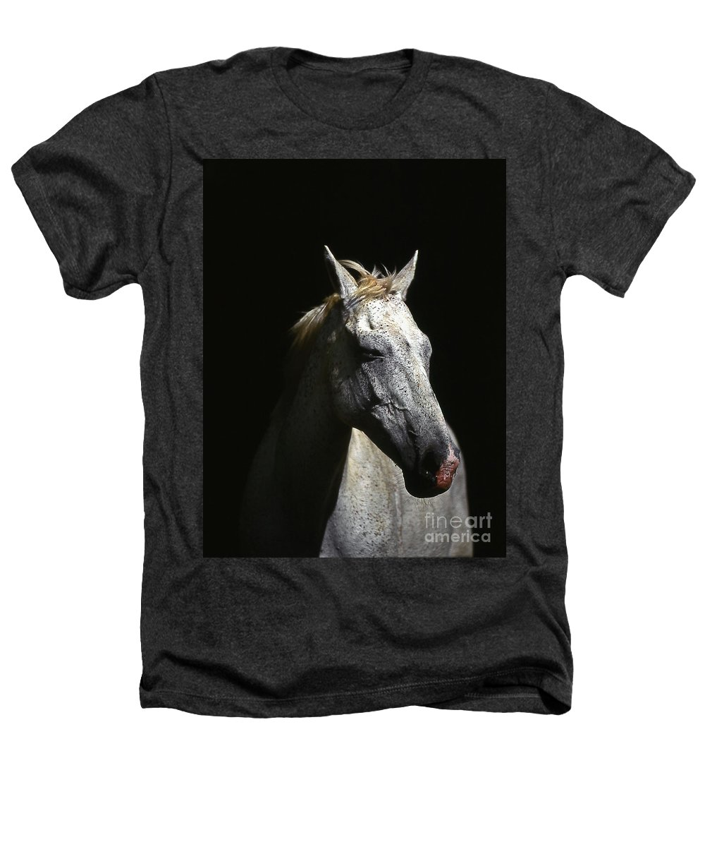 Horse Heathers T-Shirt featuring the photograph Sundance by Jim Cazel