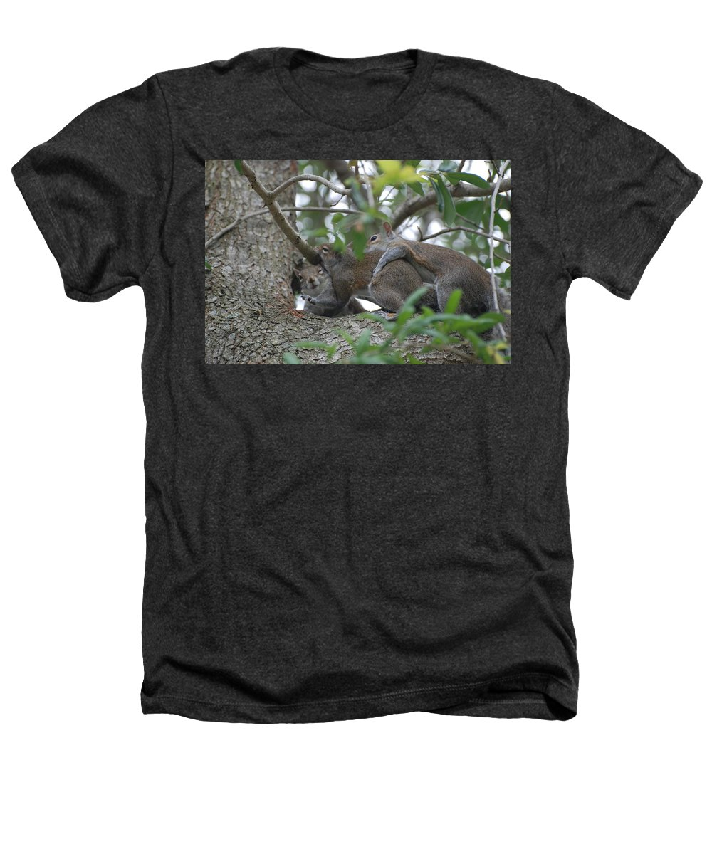 Squirrels Heathers T-Shirt featuring the photograph The Fight For Life by Rob Hans