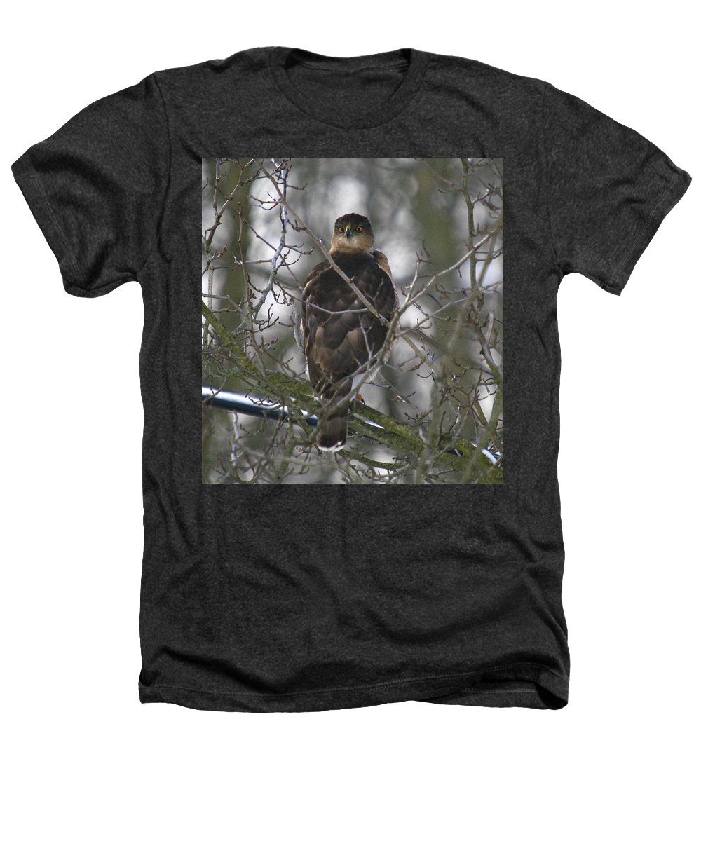 Bird Heathers T-Shirt featuring the photograph The Hawks Have Eyes by Robert Pearson