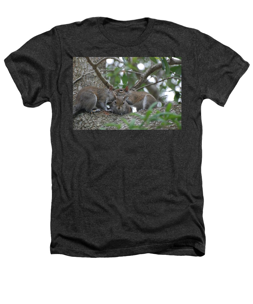 Squirrel Heathers T-Shirt featuring the photograph Why Me by Rob Hans