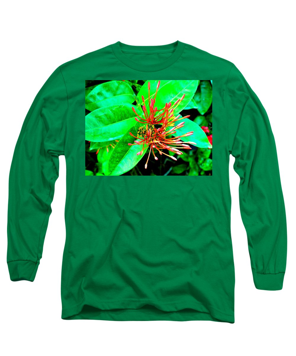 Flower Long Sleeve T-Shirt featuring the photograph In My Garden by Ian MacDonald