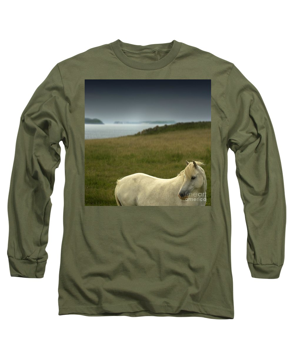 Welsh Pony Long Sleeve T-Shirt featuring the photograph The Welsh Pony by Angel Tarantella