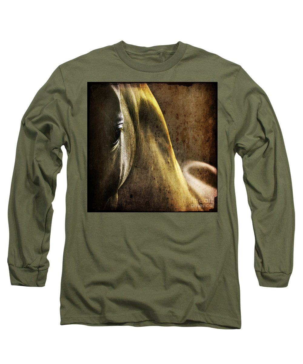Horse Long Sleeve T-Shirt featuring the photograph The Look by Angel Ciesniarska