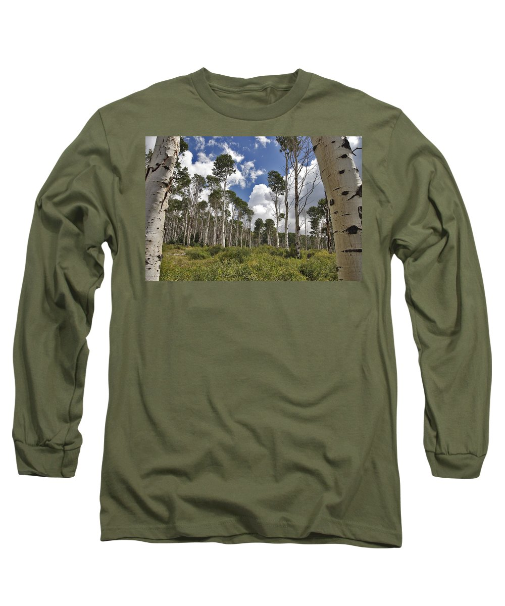 3scape Long Sleeve T-Shirt featuring the photograph Aspen Grove by Adam Romanowicz
