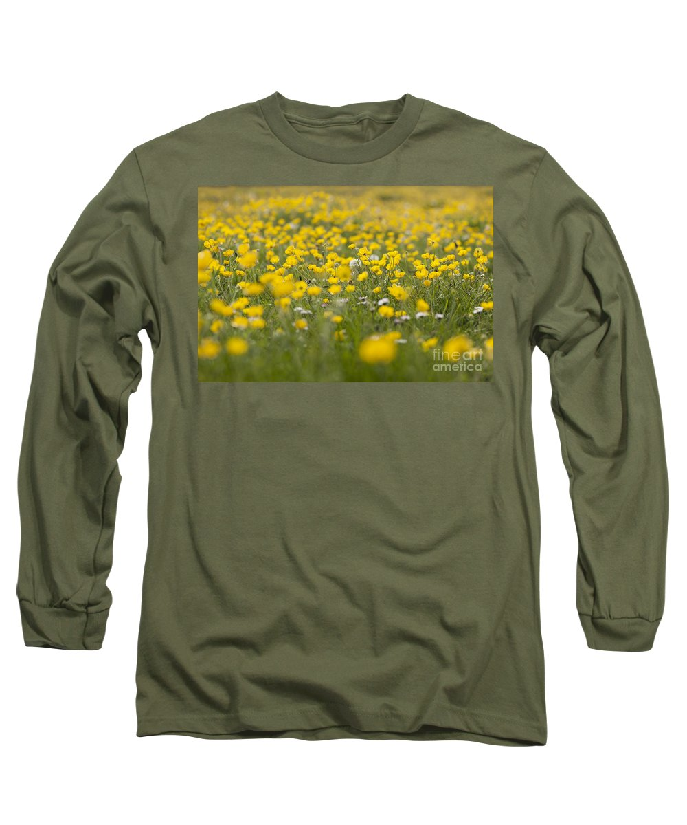 Ranunculus Bulbosus Long Sleeve T-Shirts