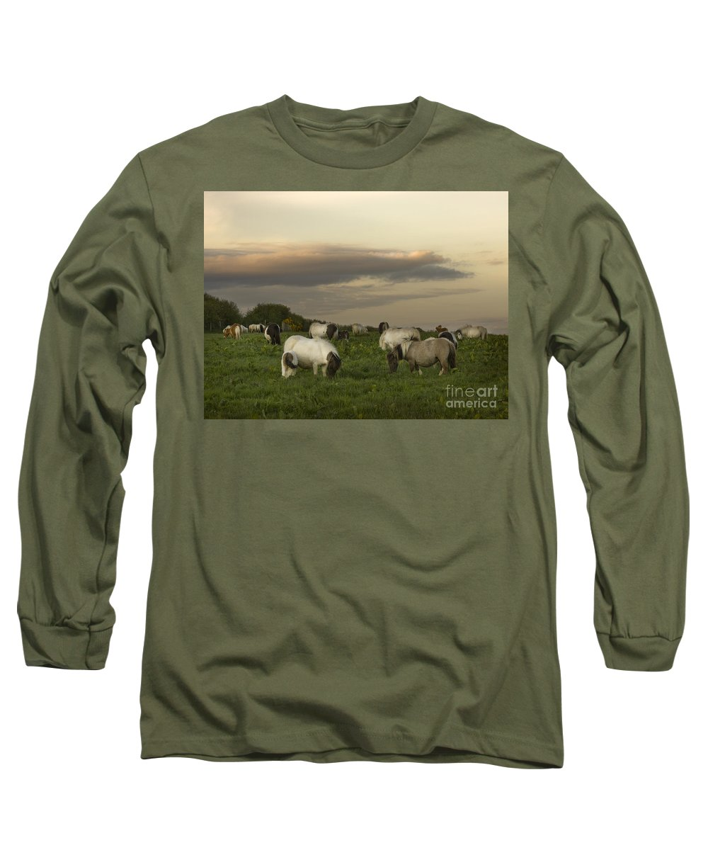 Ponies Long Sleeve T-Shirt featuring the photograph Dining Ponies by Angel Tarantella
