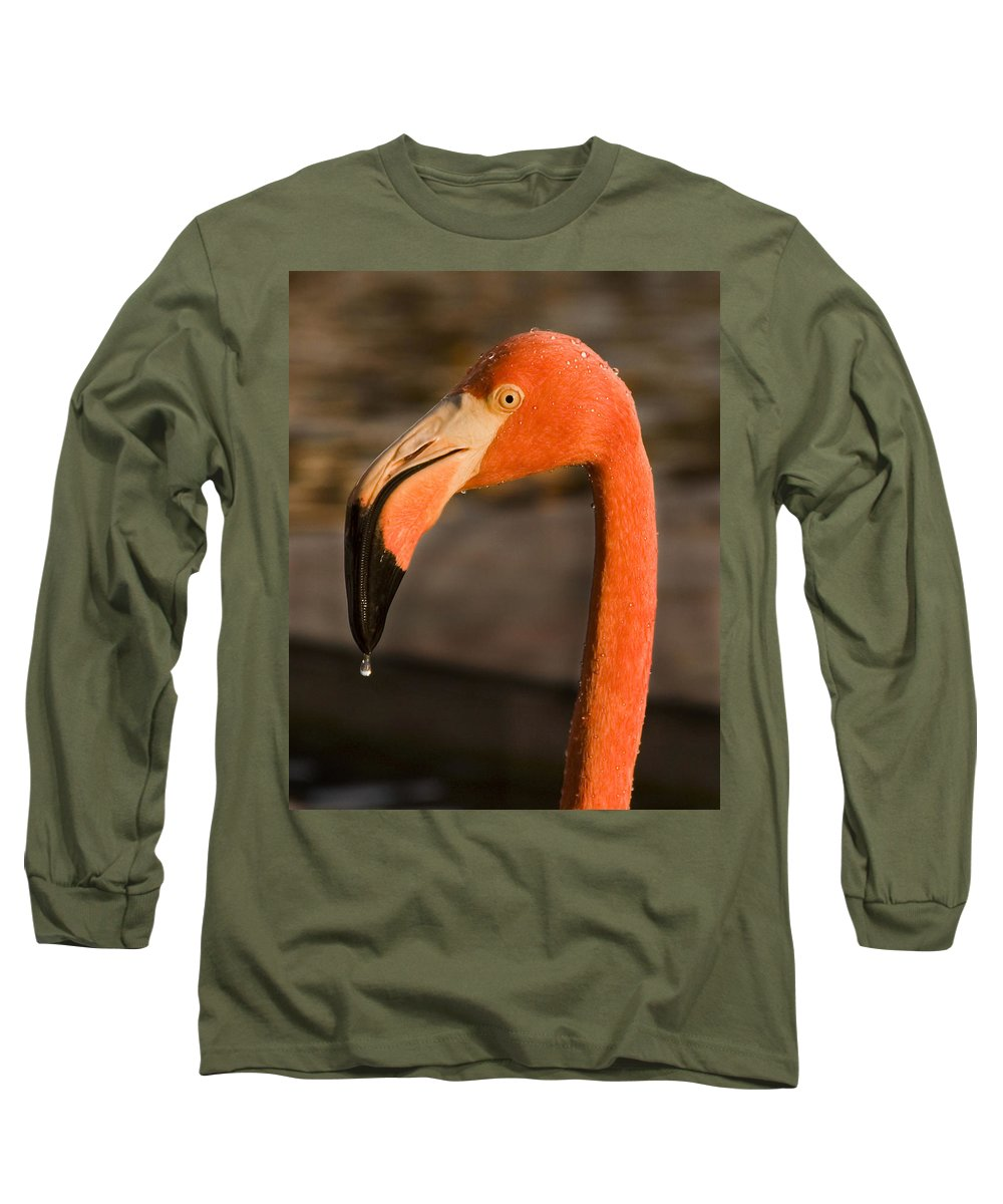 3scape Long Sleeve T-Shirt featuring the photograph Flamingo by Adam Romanowicz