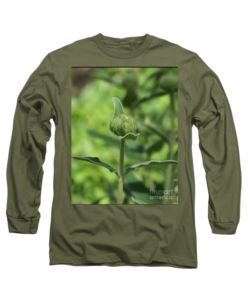 Plants Long Sleeve T-Shirt featuring the photograph Its A Green World by Kathy McClure