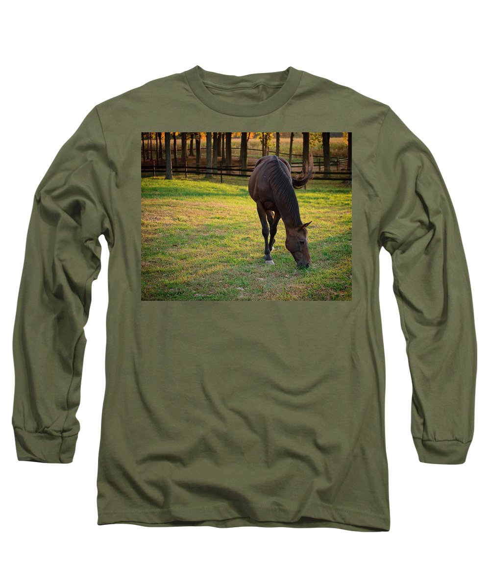 Equine Long Sleeve T-Shirt featuring the photograph Tender Spring Grass by Kristi Swift
