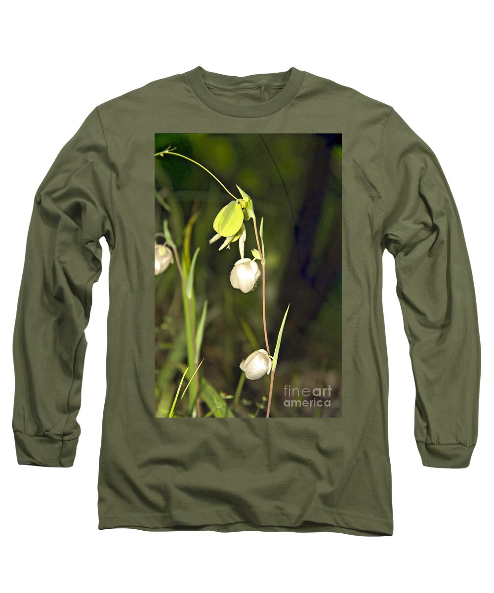 Wildflowers; Globes; Nature; Green; White Long Sleeve T-Shirt featuring the photograph Whispers by Kathy McClure