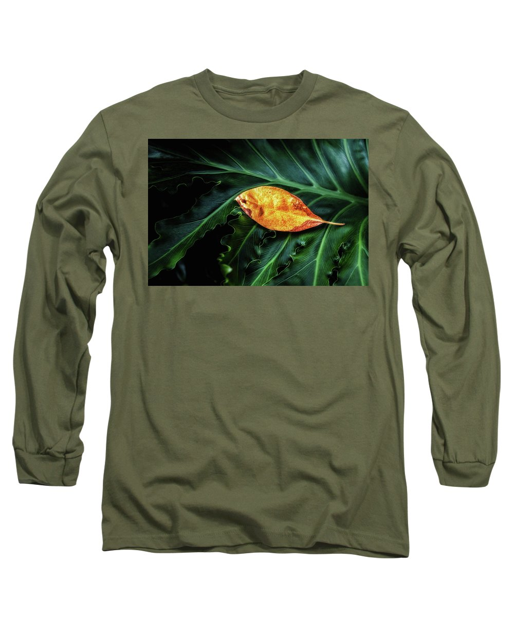 Art Long Sleeve T-Shirt featuring the photograph Life Cycle Still Life by Tom Mc Nemar