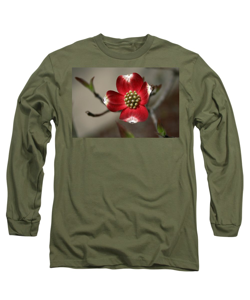 Flower Long Sleeve T-Shirt featuring the photograph Red Dogwood by Andrei Shliakhau