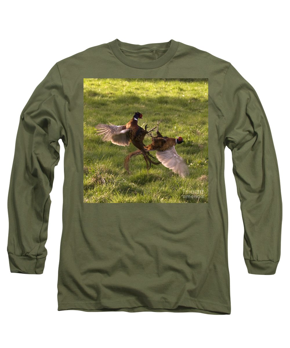 Pheasant Long Sleeve T-Shirt featuring the photograph The Sparring by Angel Tarantella
