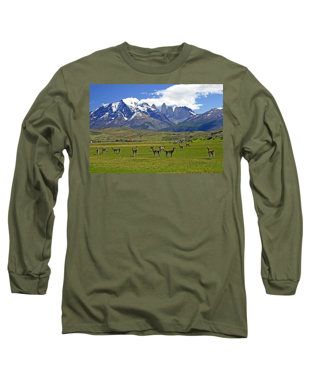 Patagonia Long Sleeve T-Shirt featuring the photograph Springtime In Torres Del Paine 10 by Michele Burgess
