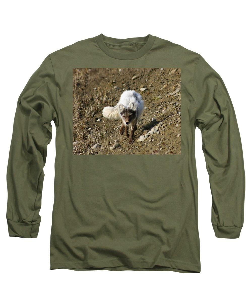 Arctic Fox Long Sleeve T-Shirt featuring the photograph Arctic Fox by Anthony Jones