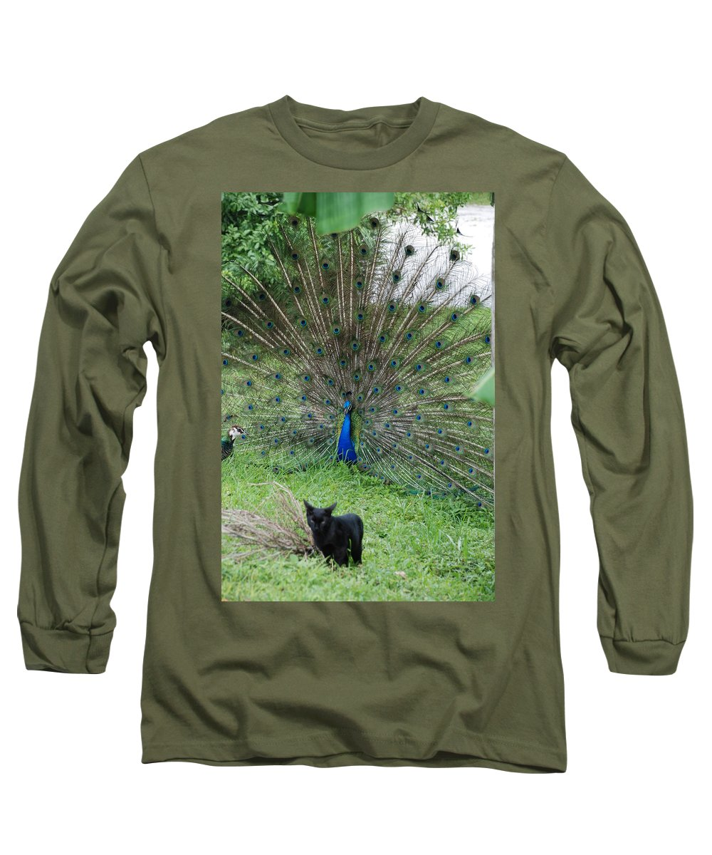 Animals Long Sleeve T-Shirt featuring the photograph 2 Peacocks And A Black Pussy Cat by Rob Hans