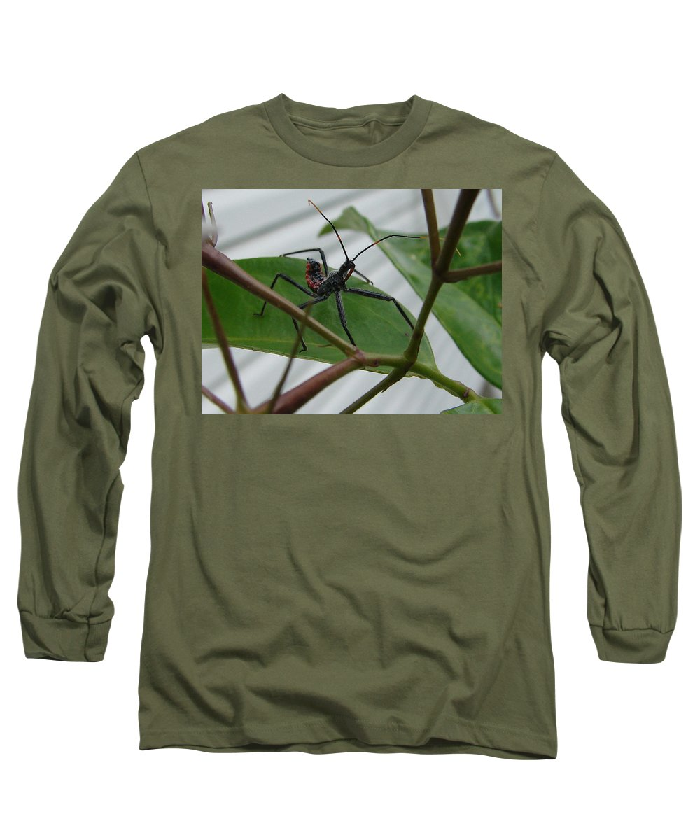 Insect Red Black Green Leaf Long Sleeve T-Shirt featuring the photograph Assassin Bug by Luciana Seymour