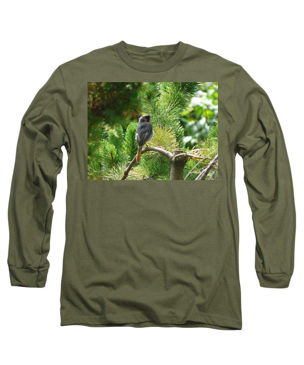 Bird Long Sleeve T-Shirt featuring the photograph Black Redstart by Valerie Ornstein