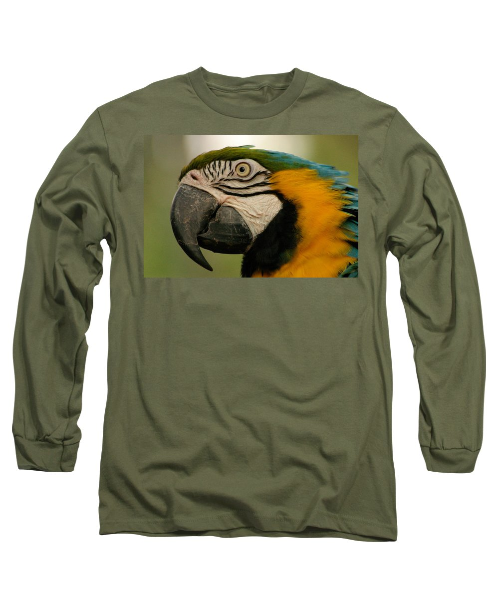 Parrot Long Sleeve T-Shirt featuring the photograph Blue Gold Macaw South America by Ralph A Ledergerber-Photography