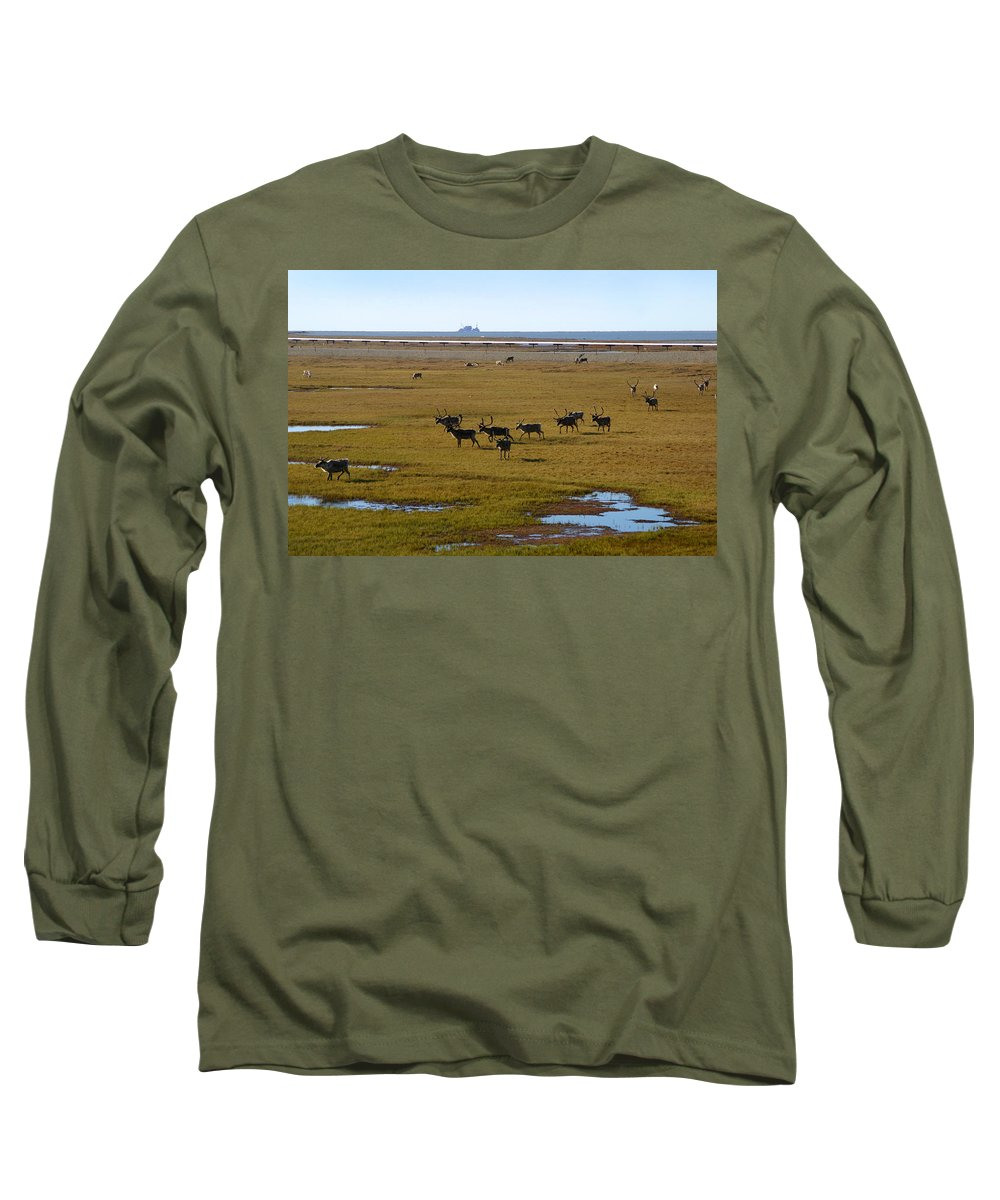 Caribou Long Sleeve T-Shirt featuring the photograph Caribou Herd by Anthony Jones