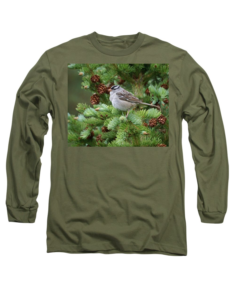 Chickadee Long Sleeve T-Shirt featuring the photograph Chickadee by Heather Coen