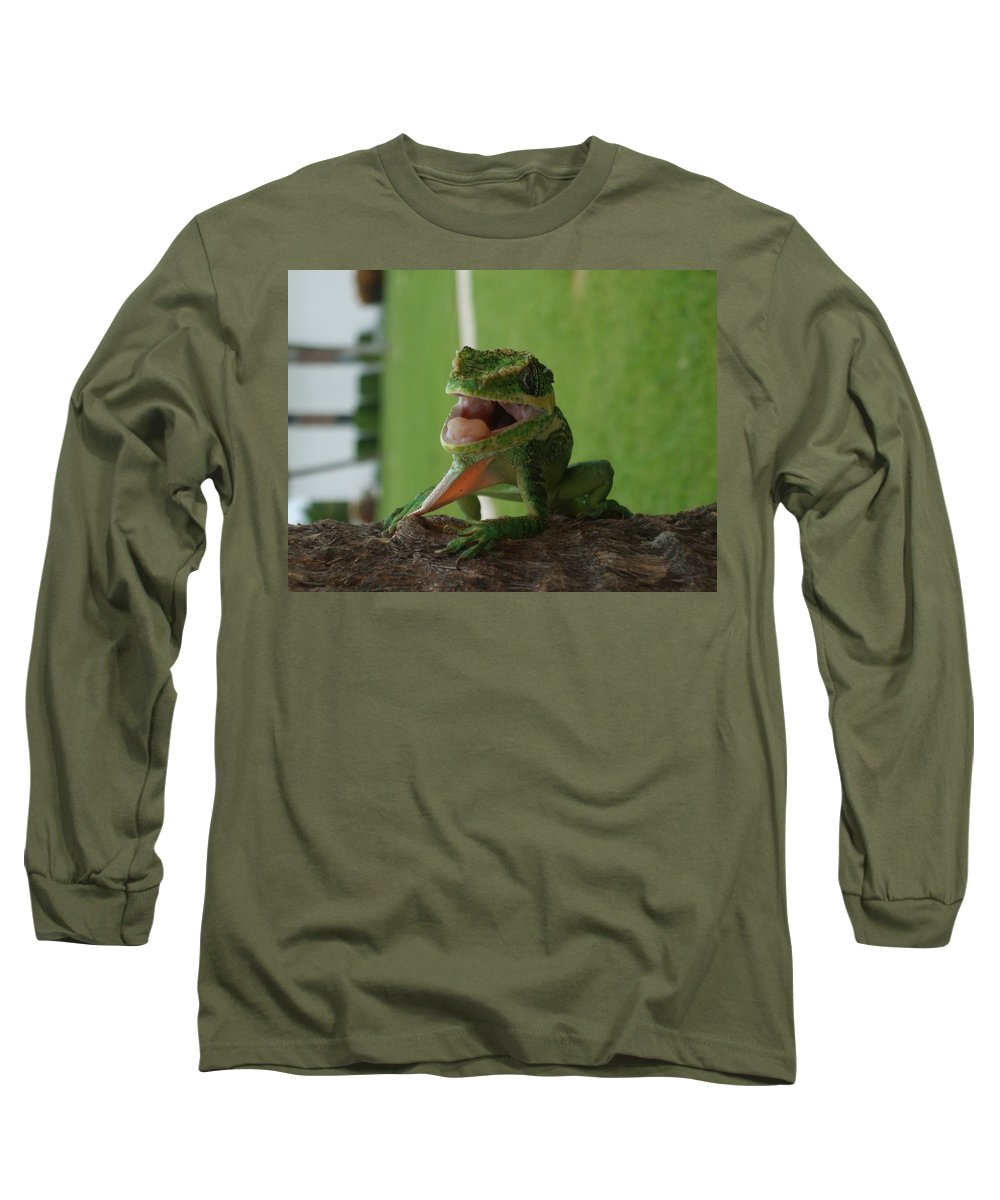 Iguana Long Sleeve T-Shirt featuring the photograph Chilling On Wood by Rob Hans