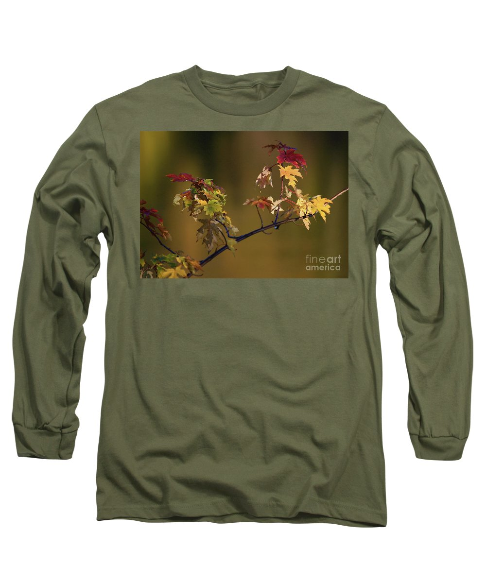 Fall Long Sleeve T-Shirt featuring the photograph Color On A Stick by Robert Pearson
