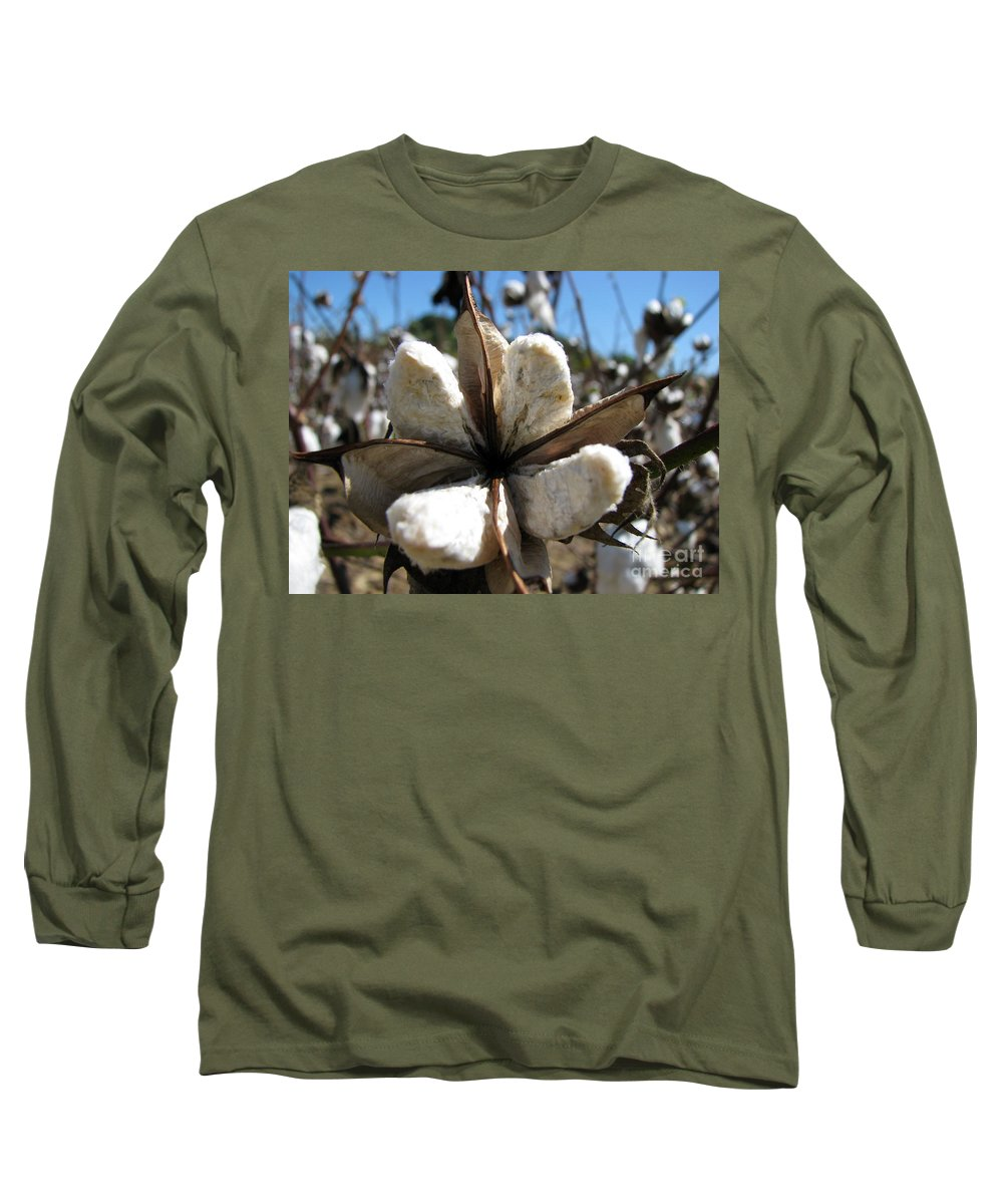 Cotton Long Sleeve T-Shirt featuring the photograph Cotton by Amanda Barcon