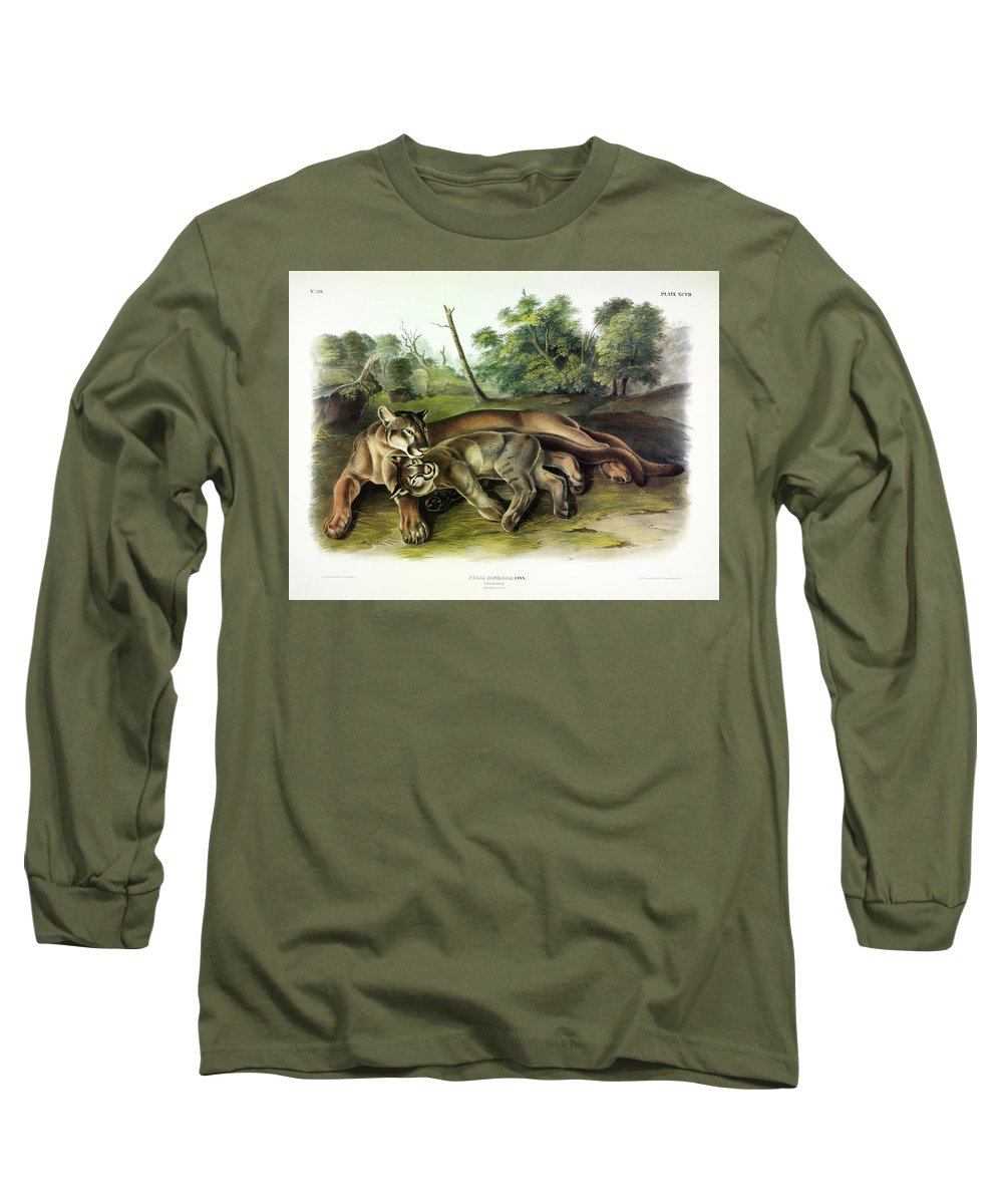 The Cougar Long Sleeve T-Shirt featuring the painting Cougars by John James Audubon