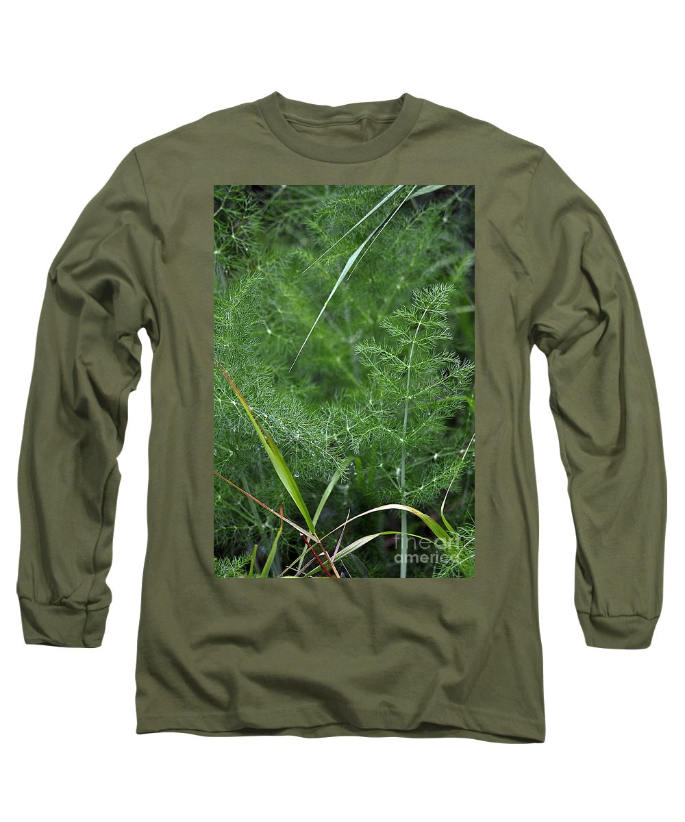 Clay Long Sleeve T-Shirt featuring the photograph Dew On The Ferns by Clayton Bruster