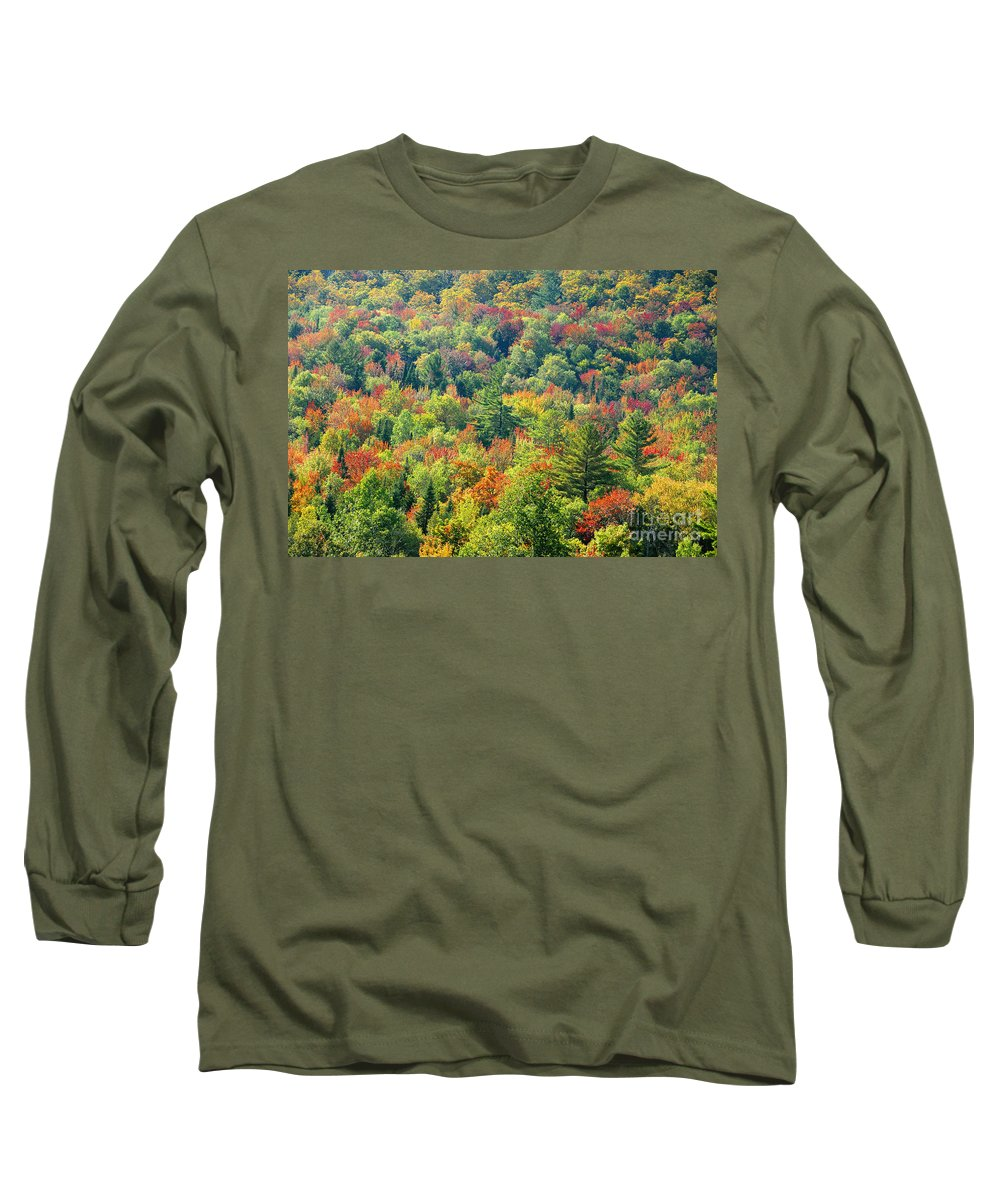 Adirondack Mountains Long Sleeve T-Shirt featuring the photograph Fall Forest by David Lee Thompson