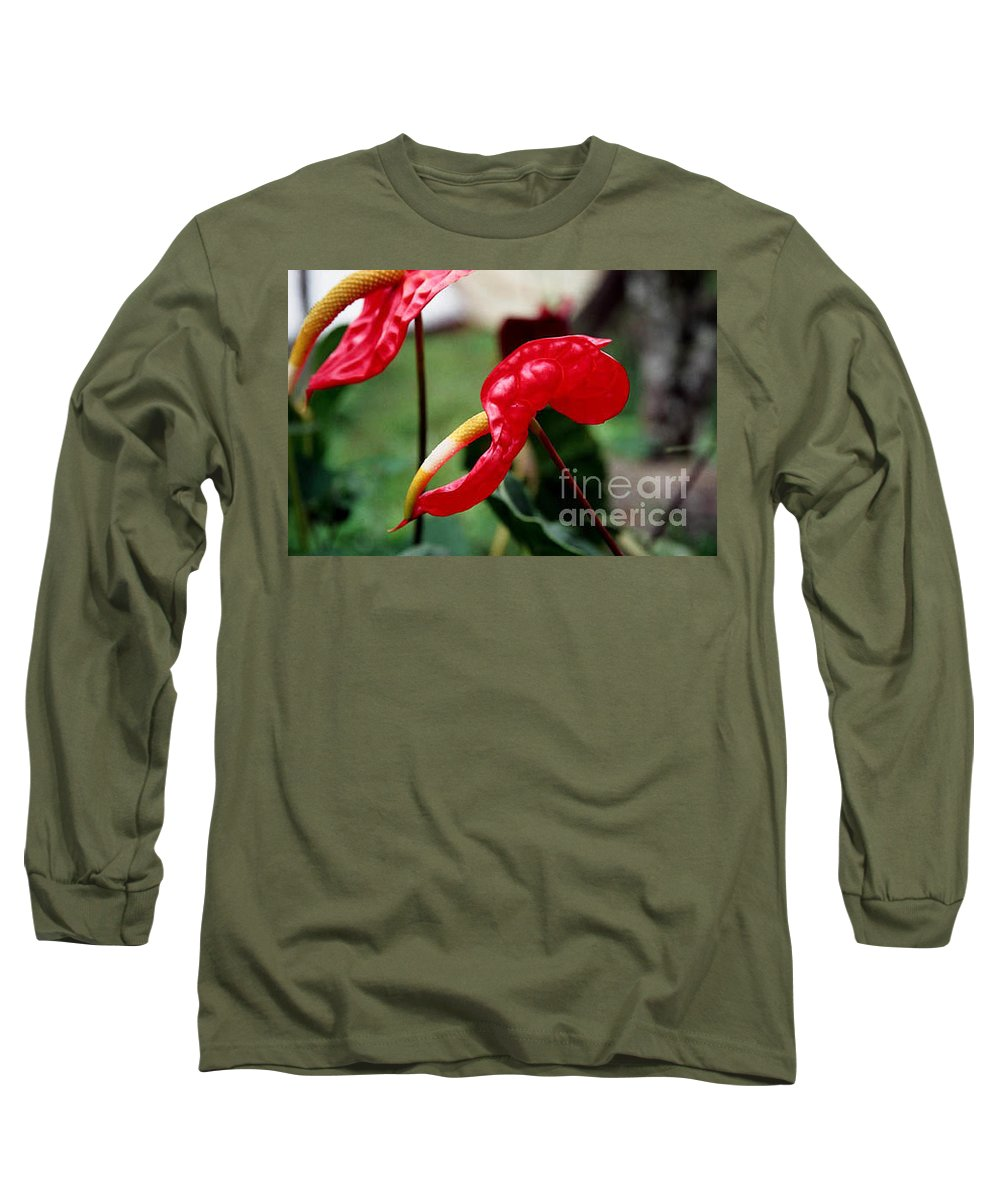 Exotic Flowers Long Sleeve T-Shirt featuring the photograph Flamingo Flower by Kathy McClure