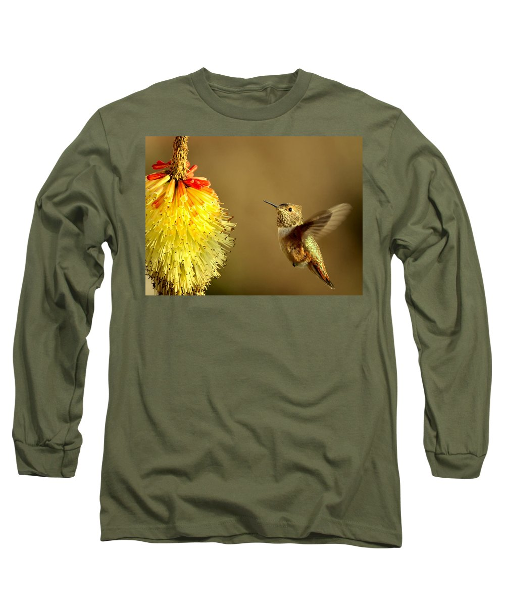 Hummingbird Long Sleeve T-Shirt featuring the photograph Flight Of The Hummer by Mike Dawson
