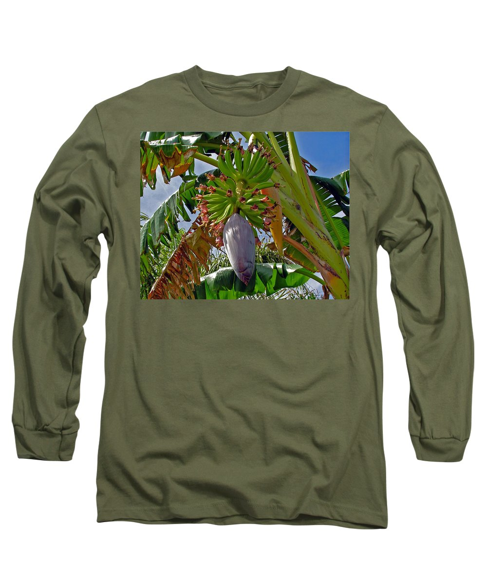 Banana; Bunch; Fruit; Flower; Tree; Stalk; Growing; Florida; Melbourne; Beach; Hand; Baby; Green; Le Long Sleeve T-Shirt featuring the photograph Florida Banana Flower And Fruit by Allan Hughes