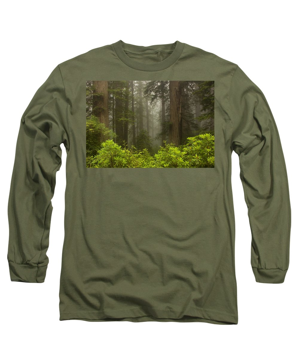 Redwood Long Sleeve T-Shirt featuring the photograph Giants In The Mist by Mike Dawson