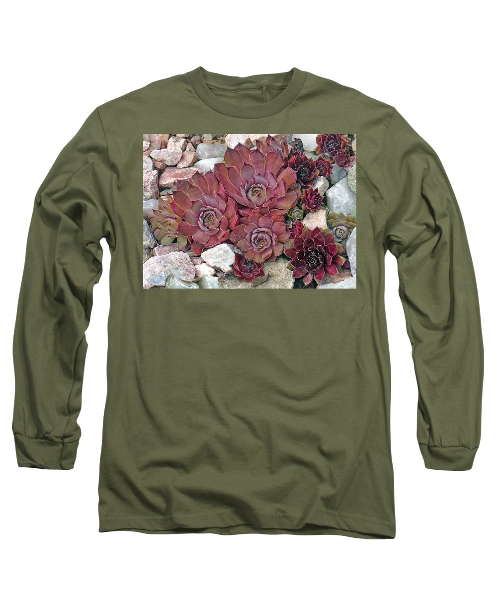 Landscape Long Sleeve T-Shirt featuring the photograph Hens And Chickens by Steve Karol
