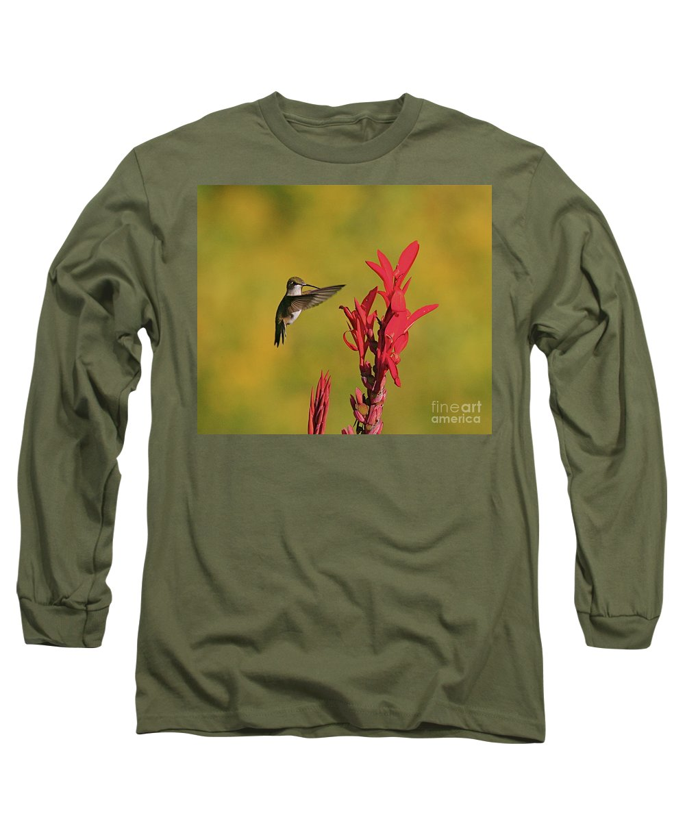 Humming Bird Long Sleeve T-Shirt featuring the photograph Hummer by Robert Pearson