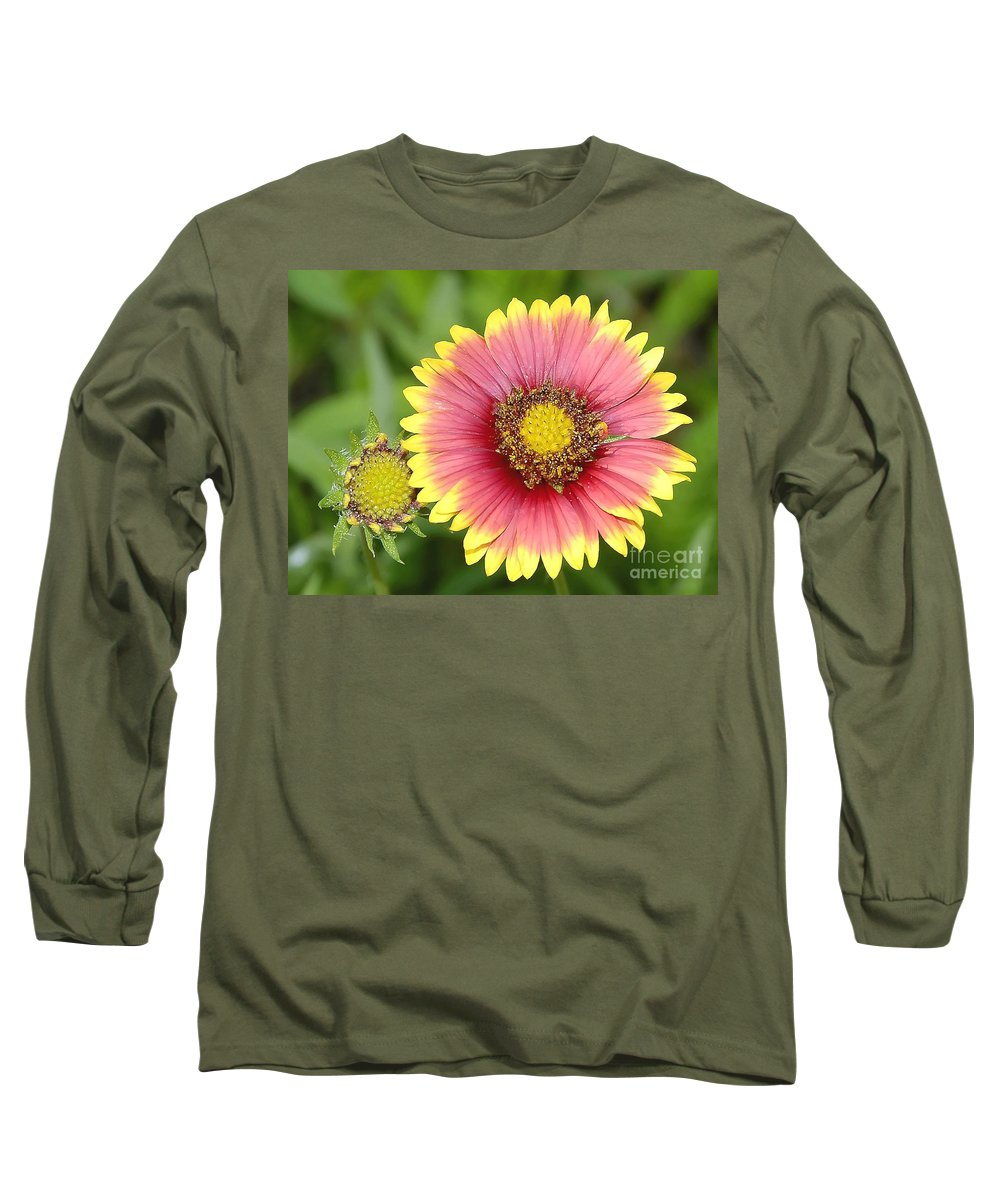 Indian Paintbrush Long Sleeve T-Shirt featuring the photograph Indian Paintbrush by David Lee Thompson
