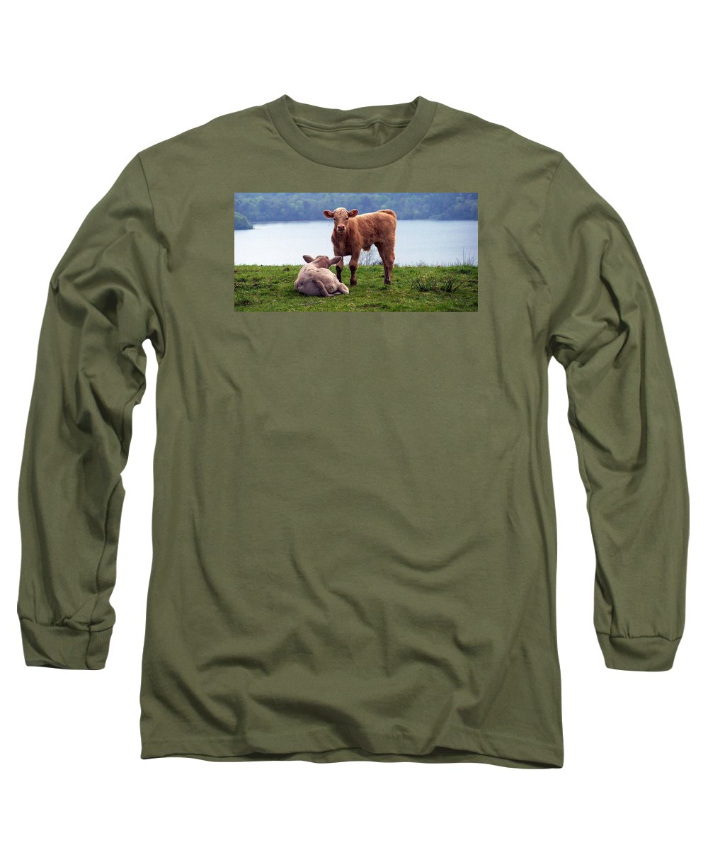 Ireland Long Sleeve T-Shirt featuring the photograph Irish Calves At Lough Eske by Teresa Mucha