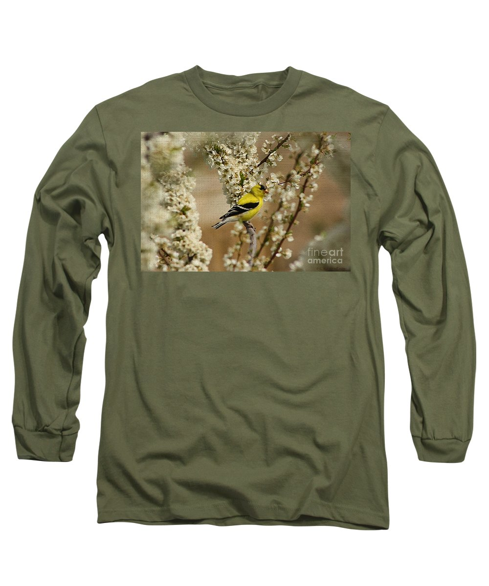 Finch Long Sleeve T-Shirt featuring the photograph Male Finch In Blossoms by Cathy Beharriell