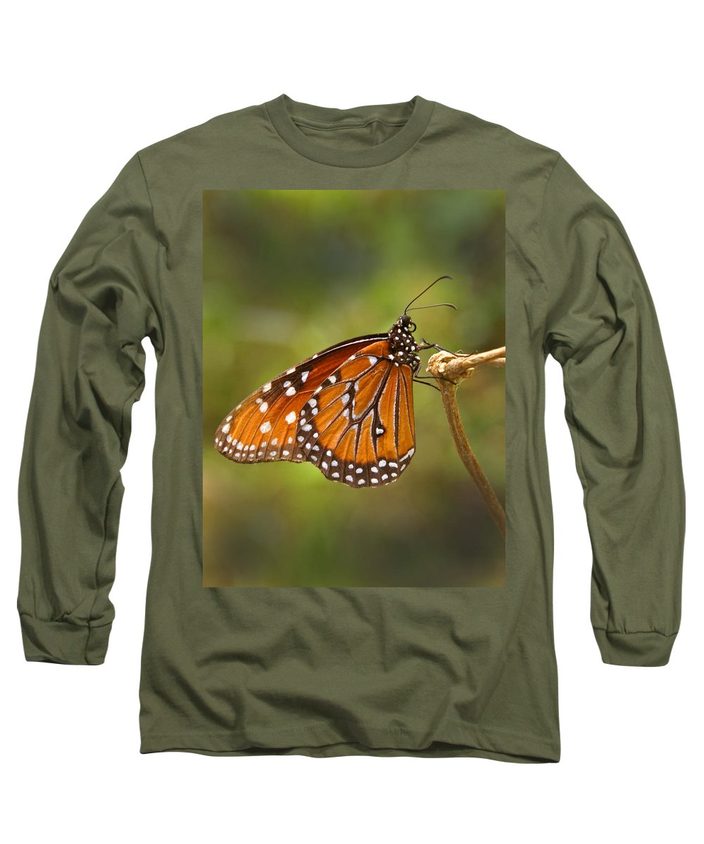 Monarch Long Sleeve T-Shirt featuring the photograph Monarch Butterfly by Heather Coen